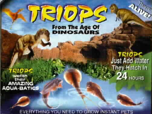 triopspacket.jpg